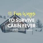 10 Fun Ways to Survive Cabin Fever {Homeschool Edition}