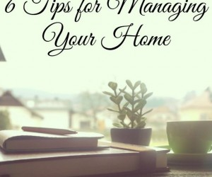 Home Management {5 Days of Homeschool 101}