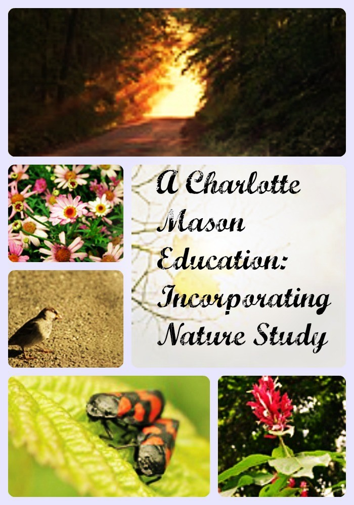 A Charlotte Mason Education Incorporating Nature Study