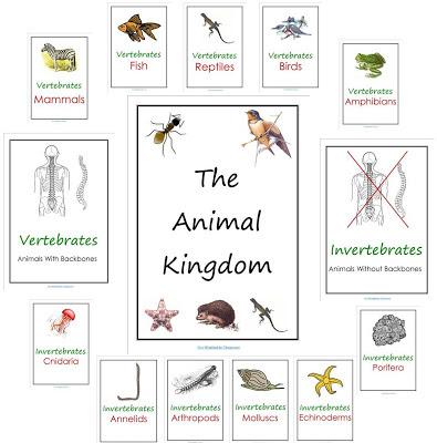 Animal Kingdom Printables