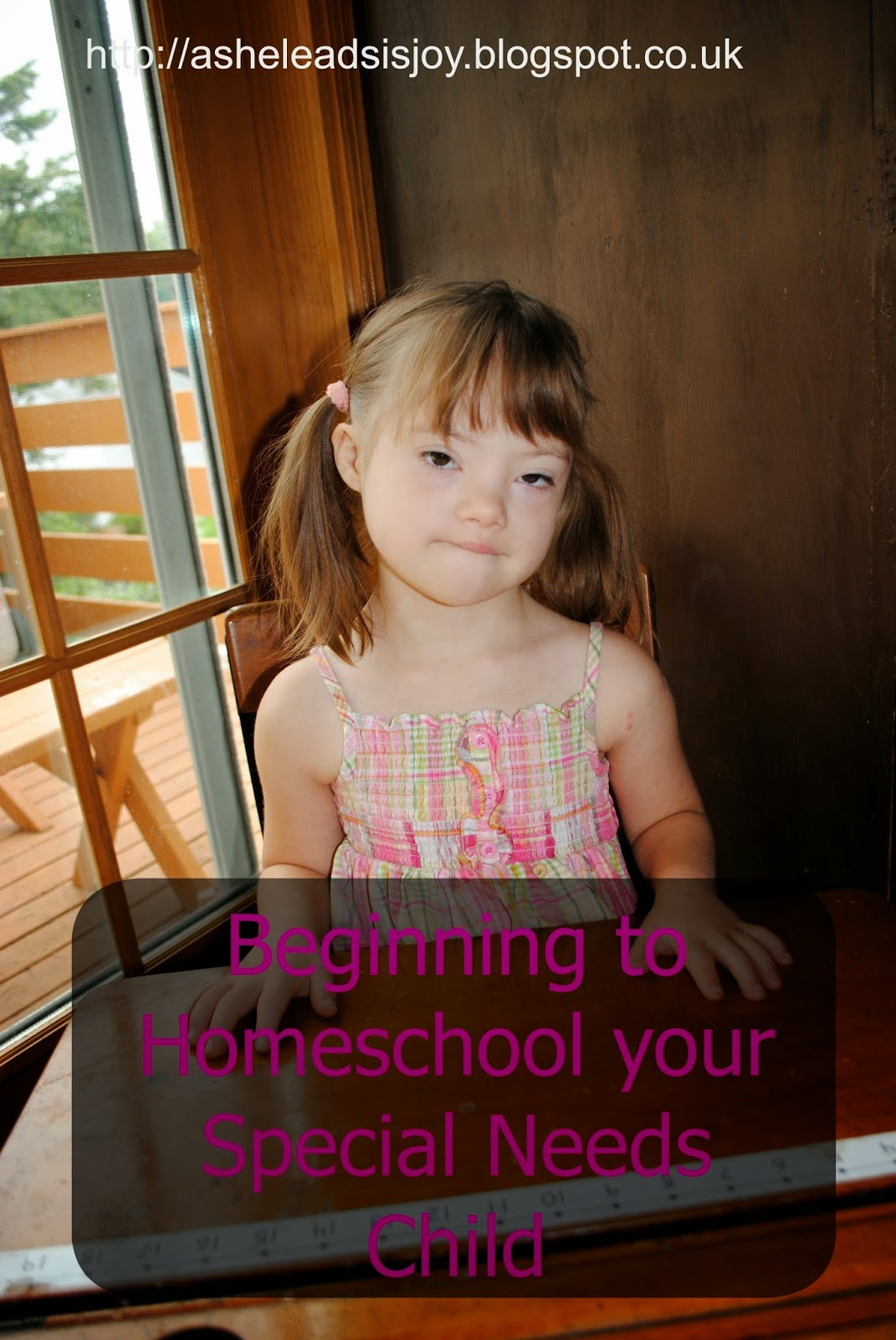 Begining to Homeschool Your Special needs Student