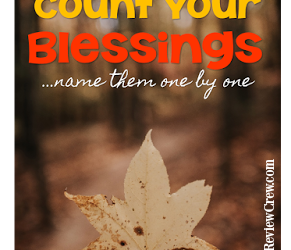 Count Your Blessings Name them One by ONE {Homeschool Link Up}
