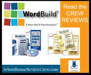 Dynamic Literacy Review