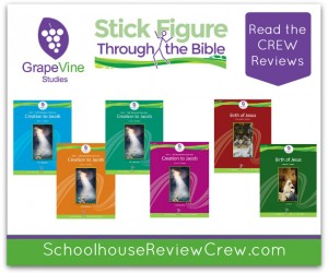Creation to the Birth of Jesus {GrapeVine Studies Review}