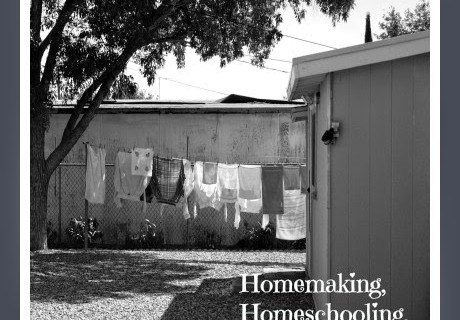 Homemaking, Homeschooling, and Raising Boys