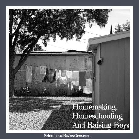 Homemaking, Homeschooling, and Raising Boys