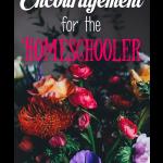 Encouragement {5 Days of Homeschool 101}