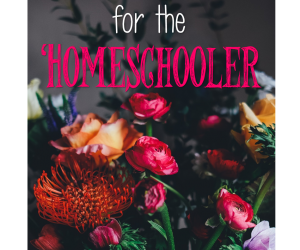 Encouragement {5 Days of Homeschool 101}