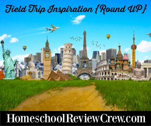 Field Trip Inspiration {Round UP}