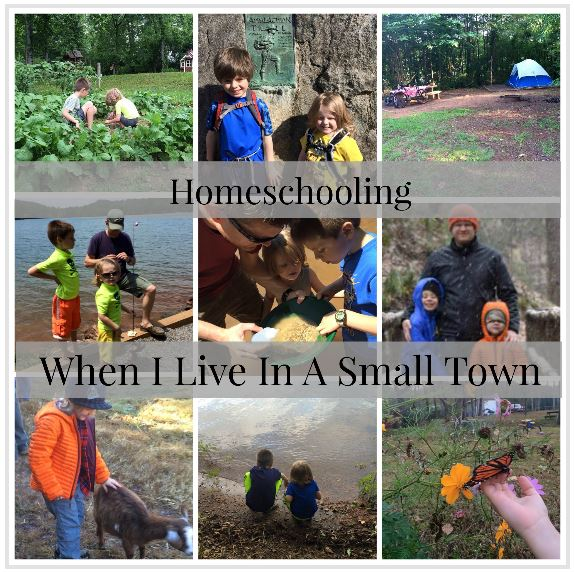 Homeschooling when I live in a small town