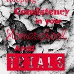 Keeping Consistency in your Homeschool amid Trials {Homeschool Blog Link UP}