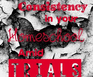 Keeping Consistency in your Homeschool amid Trials {Homeschool Blog Link UP}