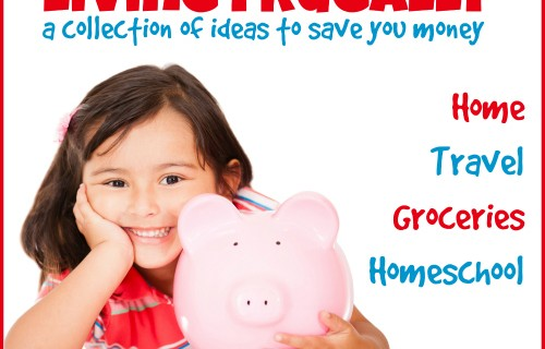 Living Frugally A Collection of Ideas to Save You Money