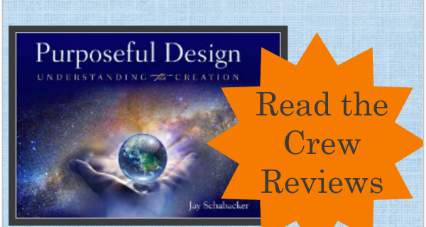 Purposeful Design Understanding the Creation Reviews