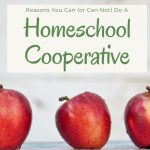 CAN the homeschool cooperative model work for your situation?