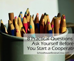 8 Practical Questions to Ask Yourself Before You Start a Cooperative!