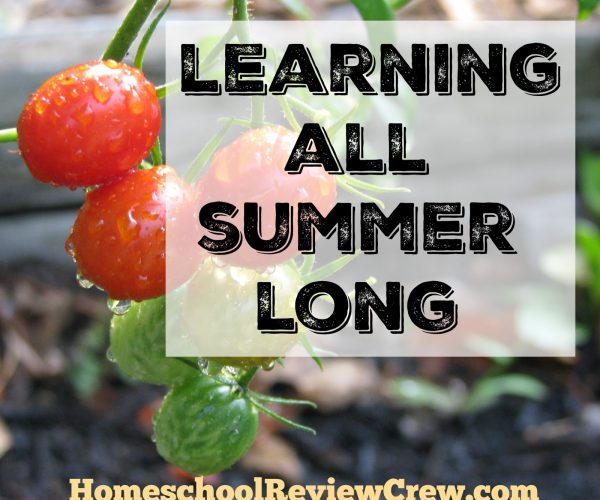 Summer Learning {Home School Link UP}