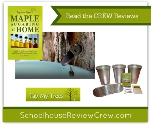 Maple Sugaring at Home {Tap My Trees Review}