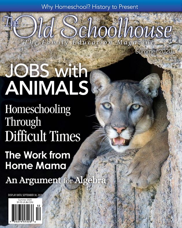 The Old Schoolhouse Summer 2020 Magazine cover