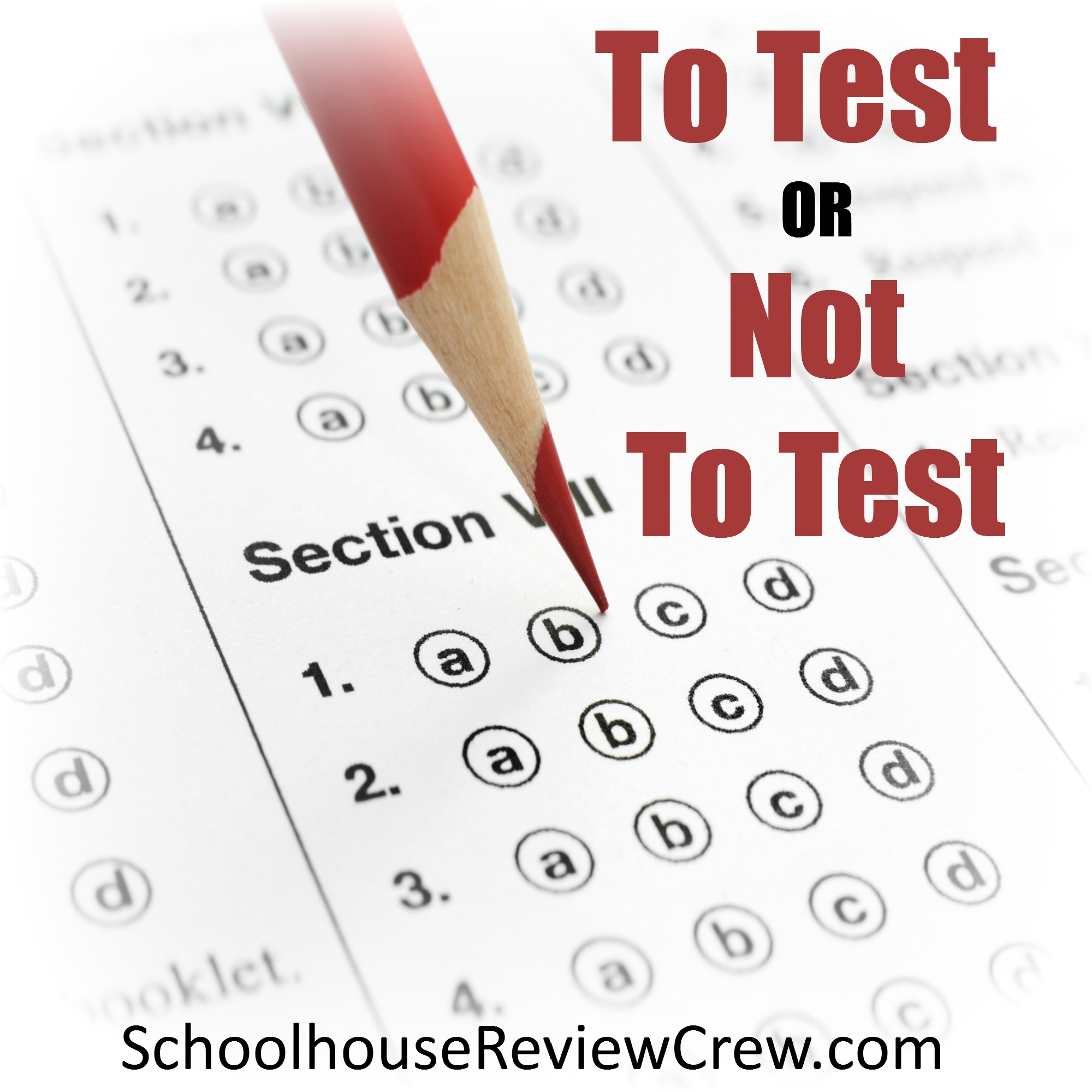 Blog Cruise: To Test or Not to Test