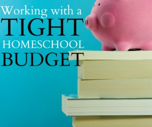 Working with a Tight Homeschool Budget