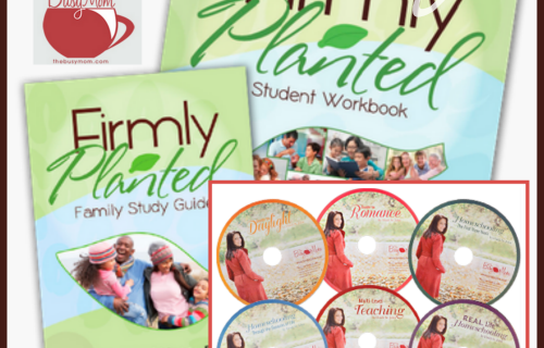 bloggy giveaway the busy mom