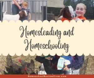 Homesteading and Homeschooling