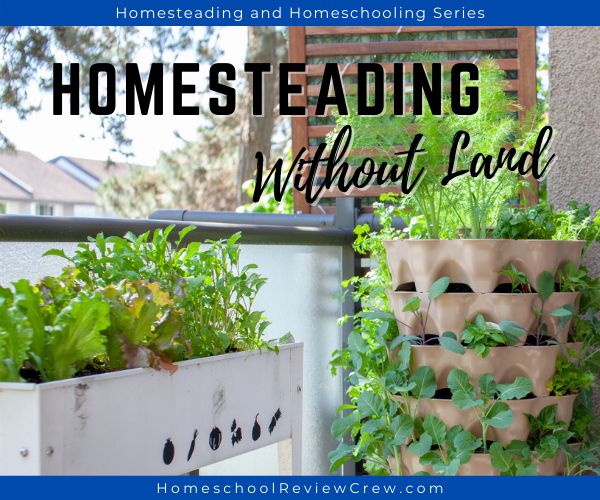 Homesteading Without Land
