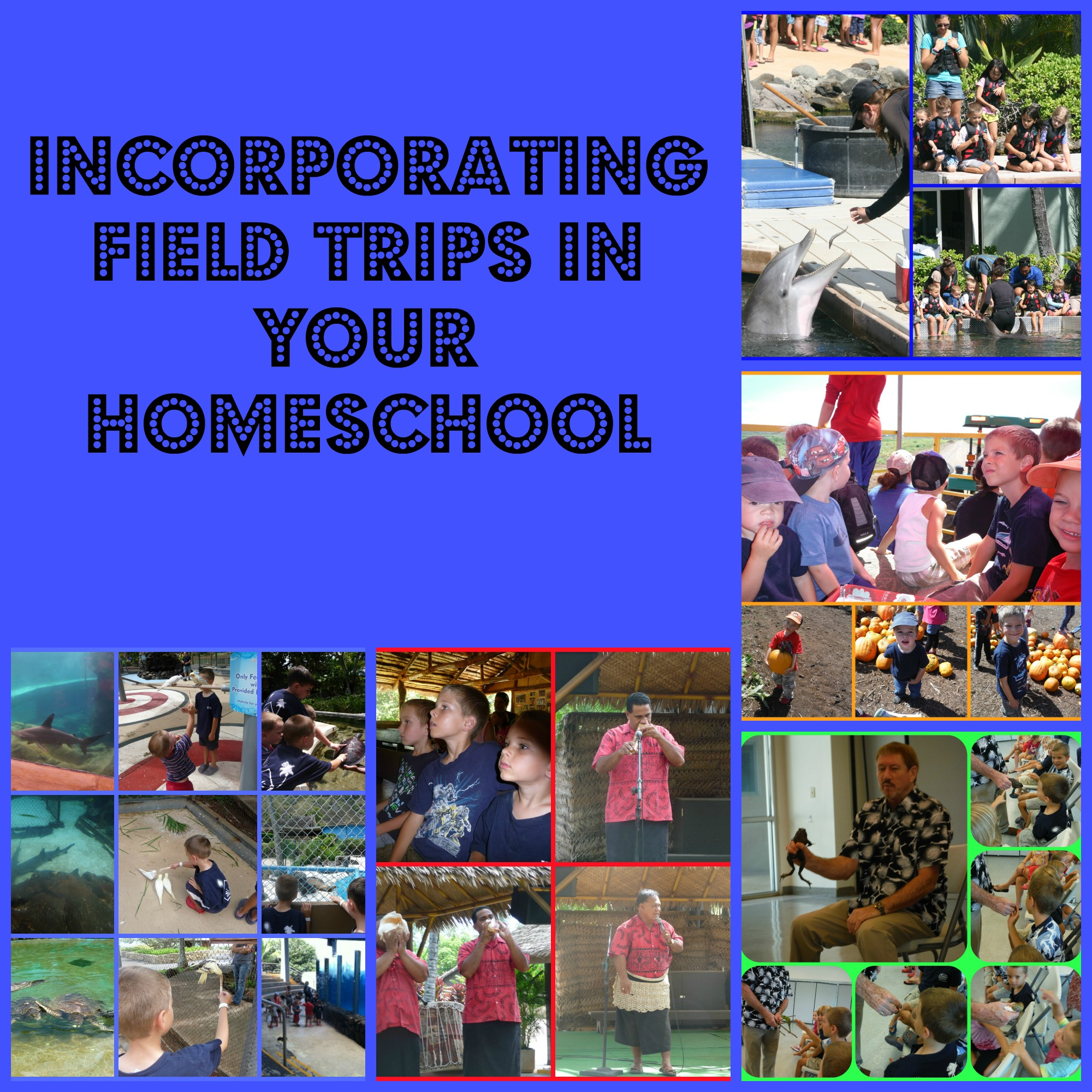 8 Ways to Incorporate Field Trips into your Homeschool