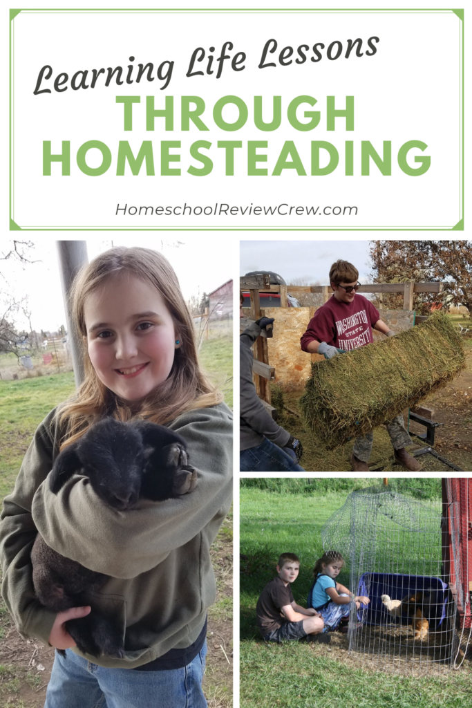 Combining the homesteading lifestyle with homeschooling is one way that parents can teach valuable life lessons.