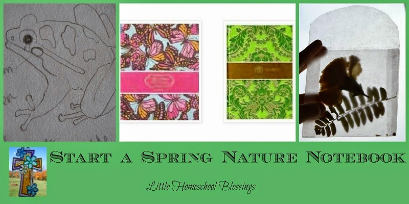 start a spring nature notebooks little homeschool blessings