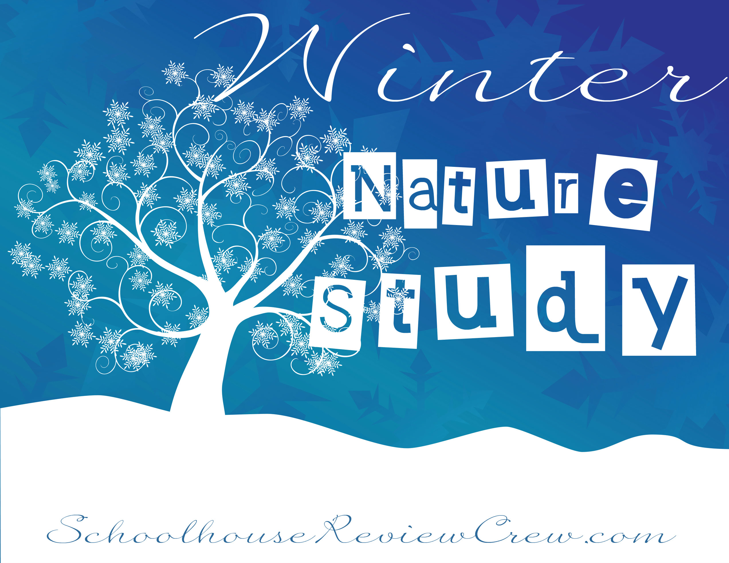 Winter Nature Study